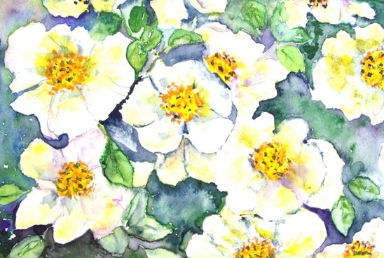 flowers nature painting