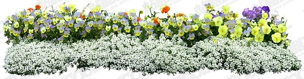flowers psd layered 16