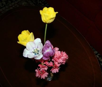flowers vase spring
