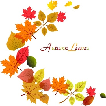 Flowing Autumn Leaves Frame