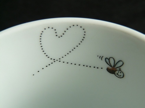 fly mosquito heart