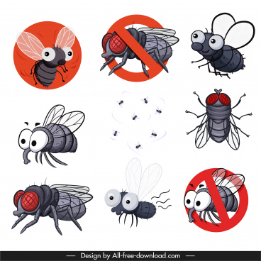 fly species icons colored classic handdrawn