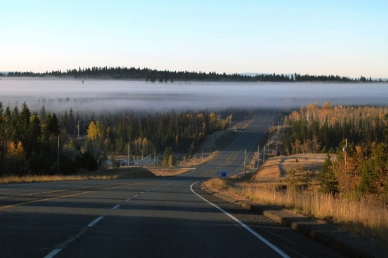 fog bank road highway