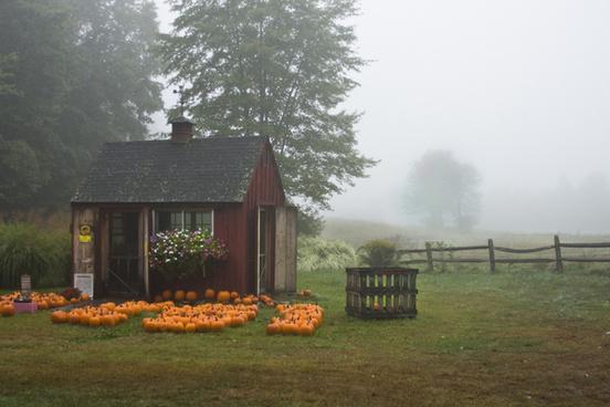 foggy farmstand