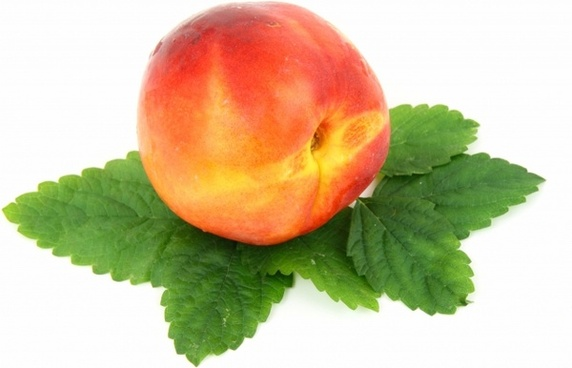 food fresh fruit