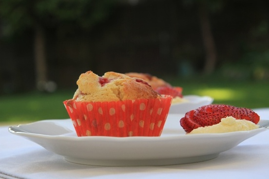 food muffins cup cake