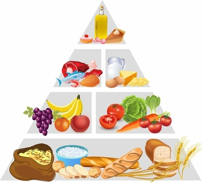 Food Pyramid