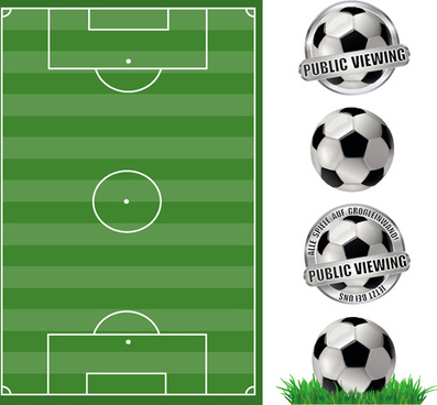 football field with football labels vector