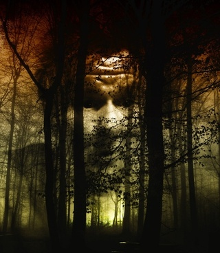 forest face fog