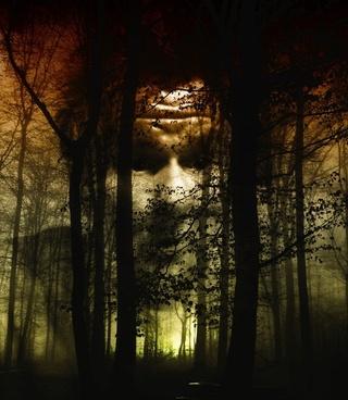 forest face fog
