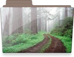 Forest folder