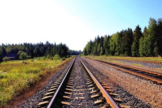 forest grass line metal pebble rail track train