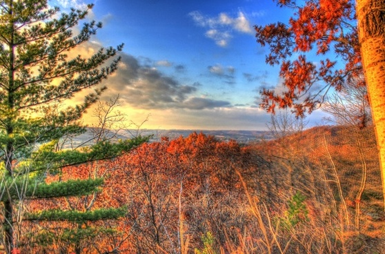 forest overlook near dusk at wildcat mountain state park wisconsin