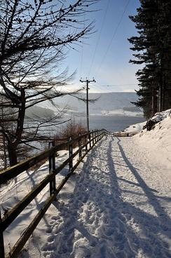 forest path near dovestones reservoir united kingdom