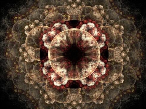 fractal cream pink