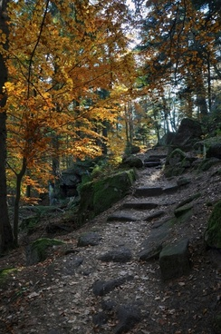 france landscape steps