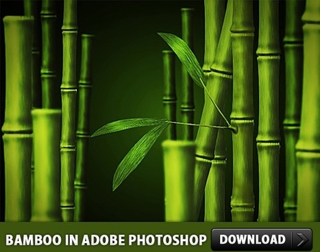 Free Bamboo PSD made in Adobe Photoshop