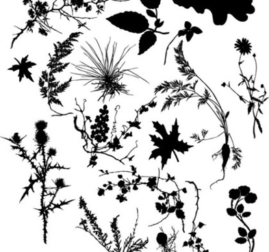 plants design elements black silhouette style