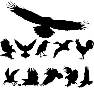 free vector birds silhouettes free cdr vector