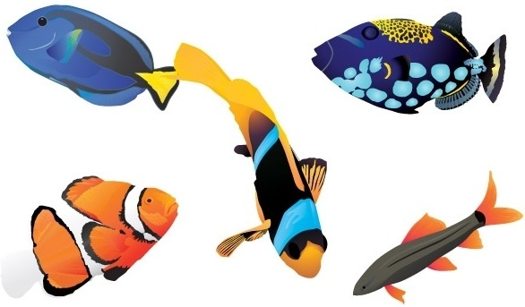 Free vector fishes