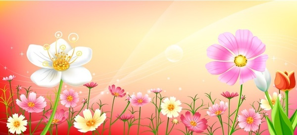 floral background bright colorful flowers collection