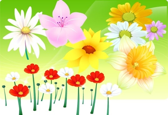 flowers background template various colorful types design
