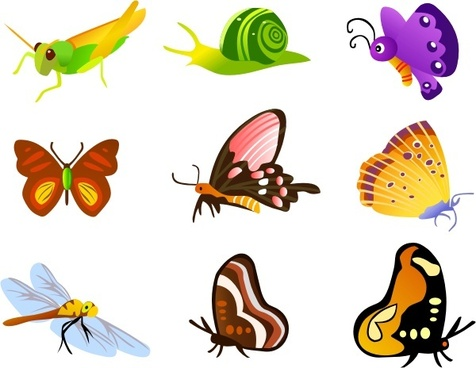 insect icons collection various colorful types
