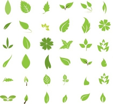green leaf icons collection various shapes decoration