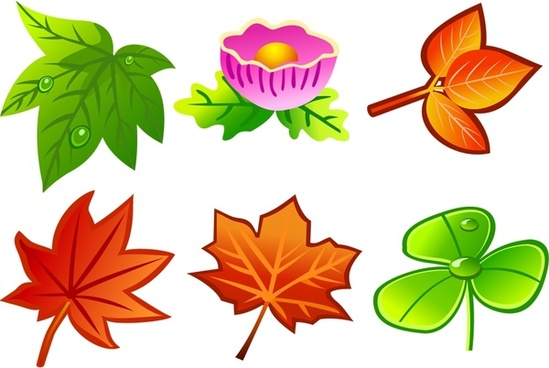 leaves icons collection various colorful types