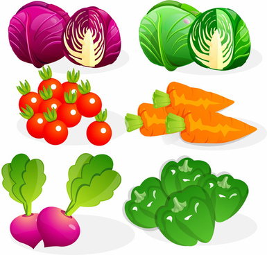 free vector vegetables food graphics