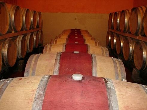frescobaldi castelgiocondo wine cellar