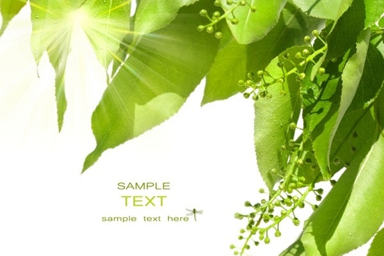 Photoshop Nature Background Free Stock Photos Download 25 460 Free