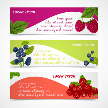 fresh berry vector banners