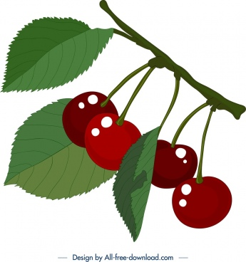 fresh cherry fruit painting shiny colored design