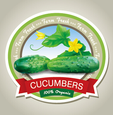 d0b787e319 Cucumber vector free vector download (70 Free vector) for commercial ...