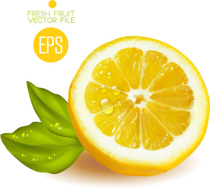 fresh cut lemon design vector