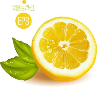 Fresh Lemons With Leaves Free Vector In Adobe Illustrator Ai Ai Encapsulated Postscript