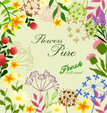 fresh flowers background colorful drawing calligraphy decor