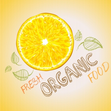 fresh food background handdrawn design lemon icon