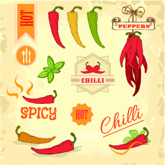 fresh food label design vector