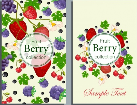 fresh fruit background strawberry grape cherry icons