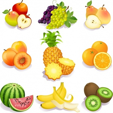 fruit icons bright modern colored 3d design