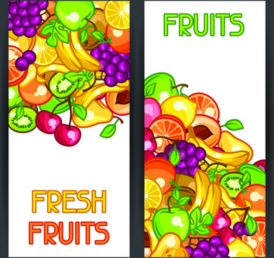 fresh fruit vertical banner vector