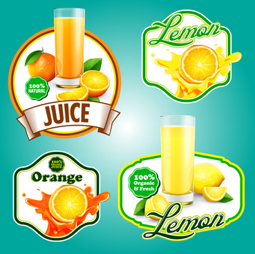 fresh fruits labels shiny vector