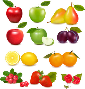 fresh fruits realistic vector