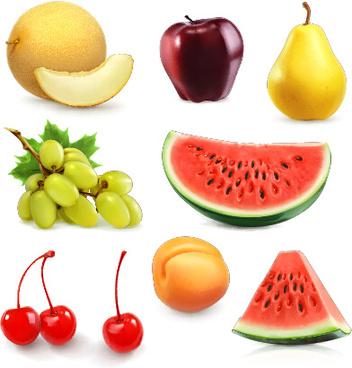 fresh fruits shiny vectors