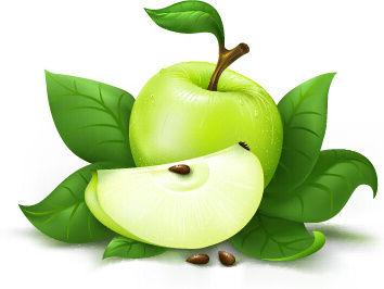 fresh green apple design vector