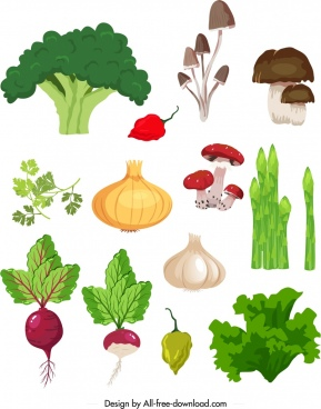 fresh ingredients icons colorful classical design
