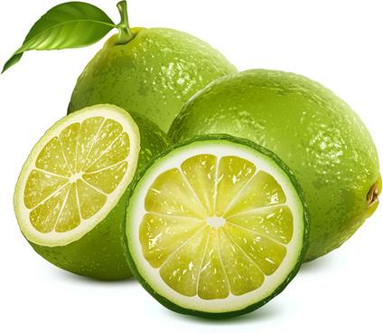 fresh lemon creative design vector