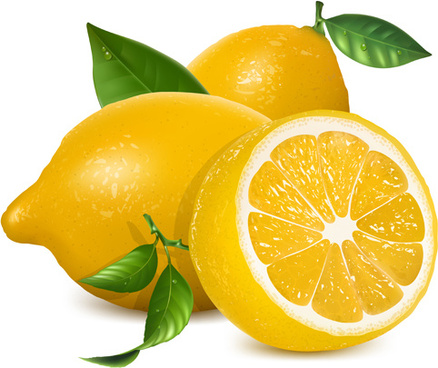 fresh lemon creative design vector